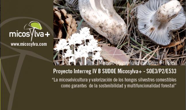 02 Seminario Internacional Micosylva +