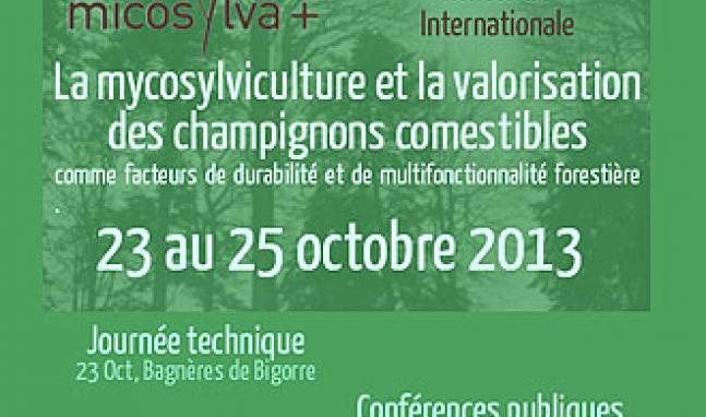 03 Rencontre internationale Micosylva+