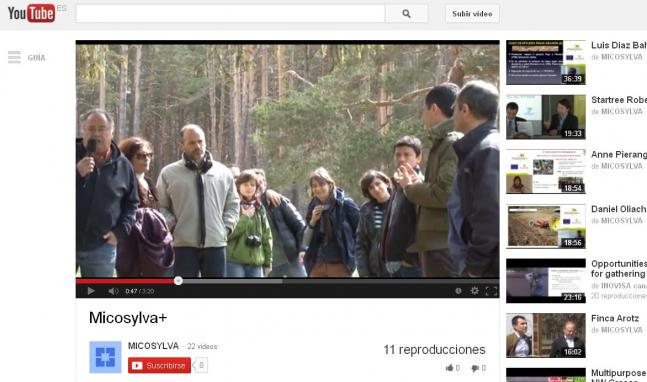 Micosylva en YouTube