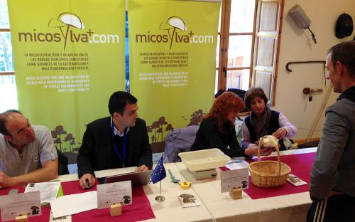 Concurso micológico 'El Miguelón de Soria 2013'. 09/11/2013