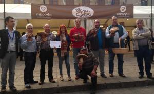 Concursantes de 'El Miguelón de Soria 2014'