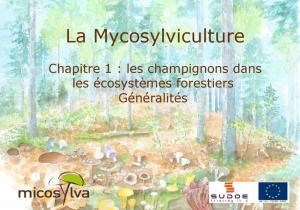 LA MYCOSYLVICULTURE