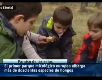 Parque Micológico de Pinar Grande