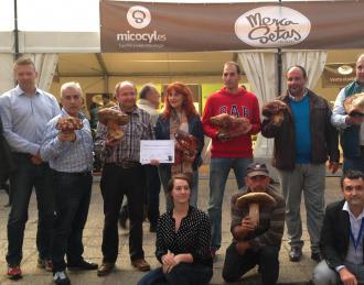 Concursantes 'Miguelón de Soria 2014'